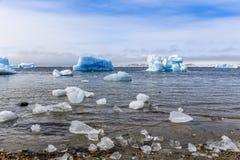 Reusachtige blauwe ijsbergen die langs de fjord, mening van oude harbo afdrijven royalty-vrije stock fotografie