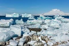 Reusachtige blauwe ijsbergen die langs de fjord met Sermitsiaq afdrijven moun stock fotografie