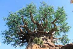 Reusachtige boom van het leven bij Dierenrijk royalty-vrije stock fotografie