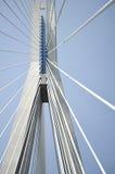 Reusachtige brug Stock Foto