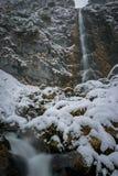 Reusachtige die waterval in de winter in sneeuw wordt behandeld Stock Fotografie