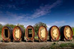 Reusachtige houten vaten met deuren Stock Afbeeldingen