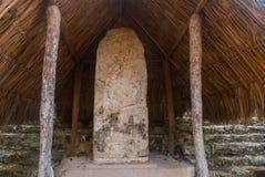 Reusachtige plaat met inschrijvingen en tekeningen op de Mayan steen Coba, Mexico, Yucatan royalty-vrije stock afbeeldingen
