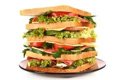 Reusachtige sandwich royalty-vrije stock afbeeldingen