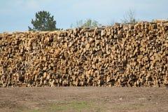 Reusachtige stapel logboeken voor timmerhout bij een zaagmolen stock afbeeldingen