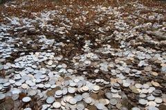 Reusachtige stapel van muntstukken Stock Foto