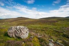 Reusachtige steen Stock Afbeeldingen
