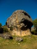 Reusachtige steen in aard royalty-vrije stock foto