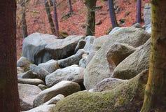Reusachtige stenen Stock Foto's