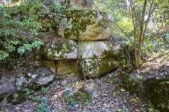 Reusachtige stenen in park Stock Fotografie