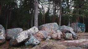 Reusachtige stenen in park Monrepos Stock Afbeeldingen