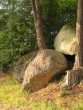Reusachtige stenen tussen de boomstammen van bomen bij de rand van het bos Royalty-vrije Stock Afbeeldingen
