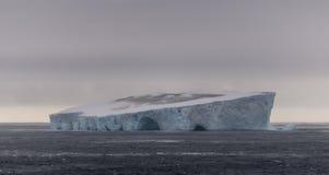 Reusachtige troep van Antarctische Stormvogels bovenop ijsberg in tabelvorm, Zuidelijke Oceaan, Antarctica stock foto