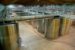 Reusachtige wijnvaten Royalty-vrije Stock Foto's