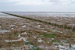 Reutilização da terra Foto de Stock Royalty Free