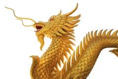 Reuze gouden Chinese draak op isolate achtergrond royalty-vrije stock afbeeldingen