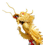 Reuze gouden Chinese draak op isolate witte achtergrond stock foto