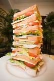 Reuze Sandwich Royalty-vrije Stock Foto's