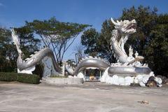 Reuze zilveren draak in Wat Tha Ton royalty-vrije stock afbeelding