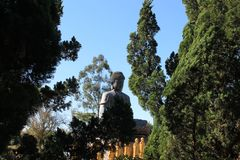 Reuzeamitabha Boedha, Chen Tien Temple - Foz doet Iguaçu royalty-vrije stock foto's