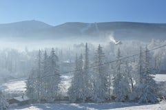 Reuzebergen/Karkonosze, Karpacz-de winter Royalty-vrije Stock Foto
