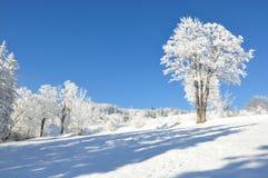 Reuzebergen/Karkonosze, Karpacz-de winter Stock Afbeeldingen