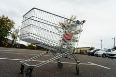 Reuzeboodschappenwagentje Stock Foto