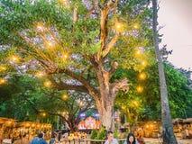Reuzeboom en licht met de de Thaise mensen of toerist van Unacquainted op 800 jaarmarkt van sukhothai historisch park royalty-vrije stock foto
