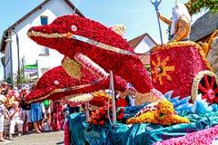 Reuzediedolfijnen van rozen in Rosenfest in Steinfurth dichtbij Slechte Nauheim, Duitsland worden gemaakt royalty-vrije stock foto's