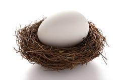 Reuzegrootteei op een nest op wit stock afbeeldingen