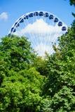 Reuzenrad achter bomen royalty-vrije stock foto