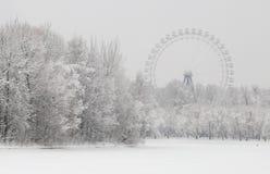 Reuzenrad over sneeuw behandeld landschap royalty-vrije stock foto's