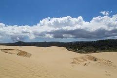 Reuzete paki sand dune in Nieuw Zeeland Stock Afbeeldingen