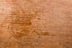 Revêtement préservatif en bois à éplucher au-dessus de long. Photos libres de droits
