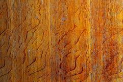 Revêtement, vernis, verni, bois, meubles, obscurité, brun, sépia, ocre, pièce, maison, bâtiment, conception, réparation, bâtiment Photo stock