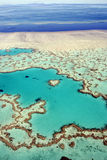 rev för hjärta för Australien barriär stor Arkivfoto