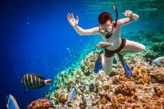 Rev för Snorkeler Maldiverna Indiska oceanenkorall Royaltyfria Foton