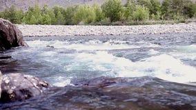 Revan av bergfloden flödar till och med stenar arkivfilmer