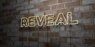 REVEAL - Glowing Neon Sign on stonework wall - 3D rendered royalty free stock illustration. Can be used for online banner ads and direct mailers Stock Images