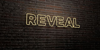 REVEAL -Realistic Neon Sign on Brick Wall background - 3D rendered royalty free stock image. Can be used for online banner ads and direct mailers Stock Image