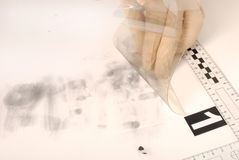 Revealing and preserving the fingerprints Stock Images