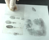 Revealing and preserving tracks. Revealing and preserving fingerprints from paper to foil Royalty Free Stock Photo