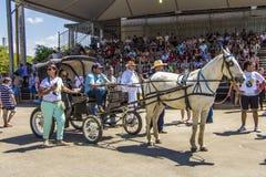 Revelando São Paulo - Sao Paulo's state Traditional Culture Festival Royalty Free Stock Image