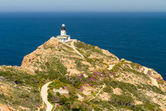 Revellata lighthouse with flowers and maquis in Corsica Royalty Free Stock Photos