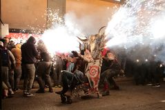 Correfoc in palma during saint sebastian local patron festivities. Revellers dressed as devils and holding fireworks take part in a traditional Correfoc fire run Stock Images