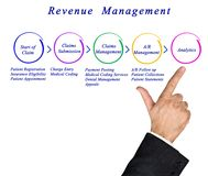 Revenue Management Process. Man presenting Revenue Management Process royalty free stock images