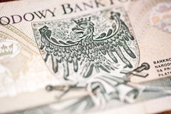 Revers of hundred polish zloty Royalty Free Stock Images