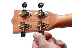 Reverse side of the ukulele headstock, isolated. Reverse side of the ukulele headstock, hand tuning machine heads, isolated Royalty Free Stock Photos