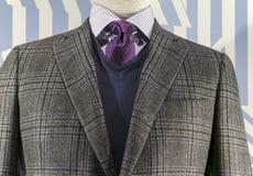 Revestimento Checkered, camisola azul (horizonta Foto de Stock