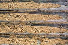 Revestimento de madeira detalhado Textured das pranchas na areia na praia com pegadas das sapatas fotografia de stock